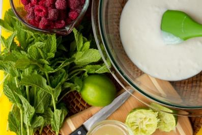 Raspberry Mojito Frozen Yogurt Pops | Happy Days Goat Dairy
